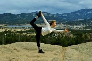 yogi in colorado